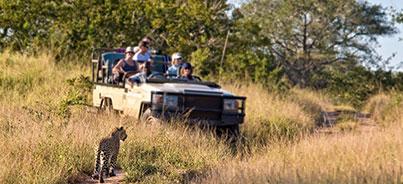 Amboseli National Park , Nairobi