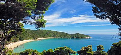 Auckland , Christchurch , Lake Tekapo , Queenstown , Rotorua, Wanaka , Milford Sound