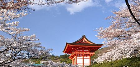 Kanazawa , Kyoto , Matsumoto , Takayama , Tokyo , Monte Fuji- Japão